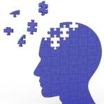 Body.Brain.Puzzle