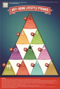 Support.Anti.Aging.Pyramid